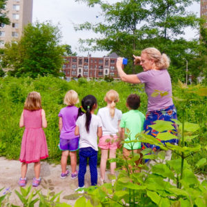 Jr kindergarten spots an Indigo Bunting