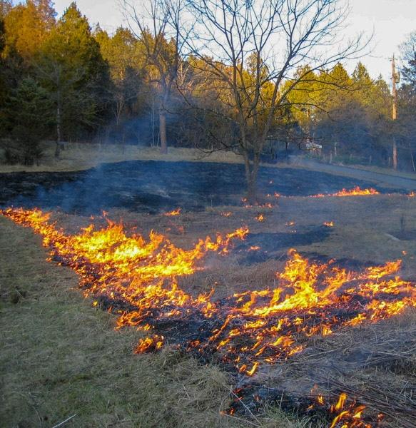 Front burn