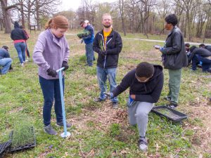 Kennedy Woods grass planting